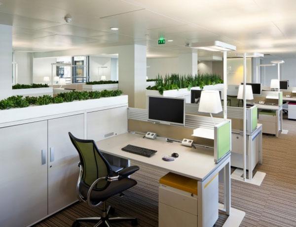 Kết hợp thiên nhiên vào văn phòng làm việc