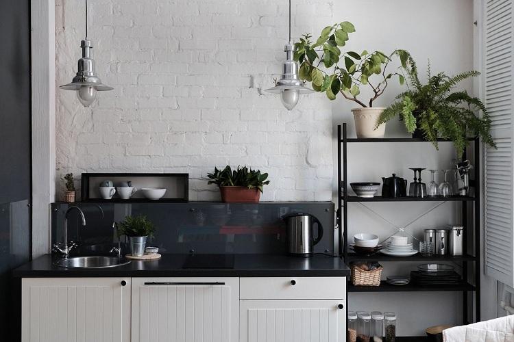 Có nên đặt cây phong thủy tại phòng bếp
